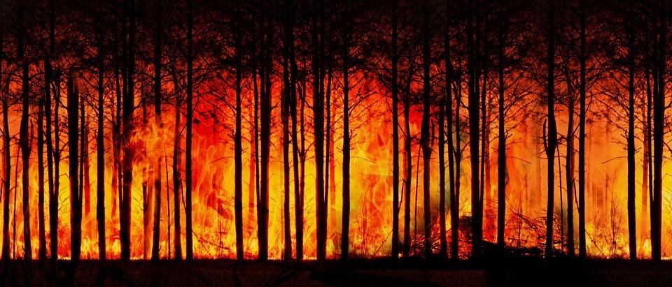 """AW392906 02 IPCC UYARDI: """"İKLİM DEĞİŞİKLİĞİNİ SINIRLANDIRMAK İÇİN DERHAL HAREKETE GEÇİLMELİ"""""""